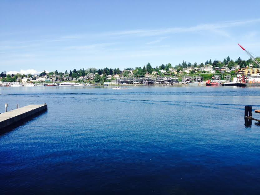 Seattle Florist Association & Google Analytics - Typeset Design