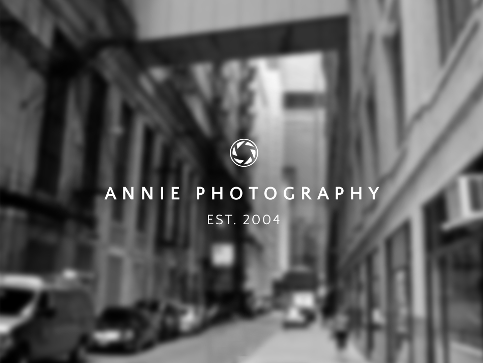 Annie Photography sans-serif logo by Typeset Design