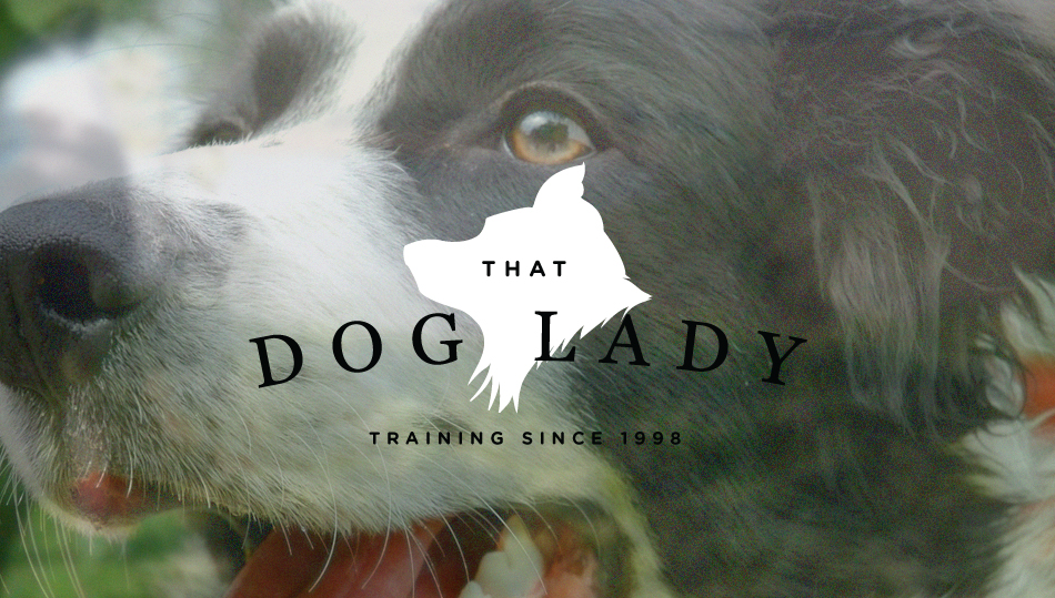 thatdoglady1